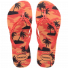 4145573_0027_HAVAIANAS FLASH SWEET SUMMER_C